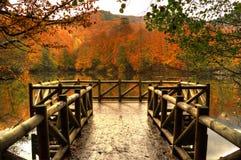 Pilastro di legno, autunno in lago immagine stock