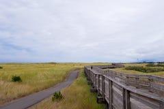 Pilastro di legno circondato da erba per la camminata lungo l'oceano Fotografia Stock