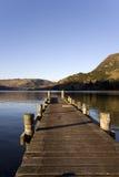 Pilastro di legno su un lago Fotografia Stock