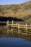 Pilastro di legno su un lago Immagine Stock