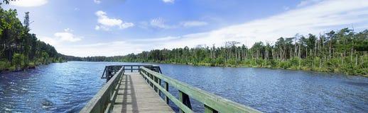 Pilastro di legno sulla riva del lago fotografia stock