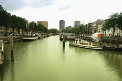 Pilastro di Rotterdam, Paesi Bassi; Europa Fotografie Stock Libere da Diritti