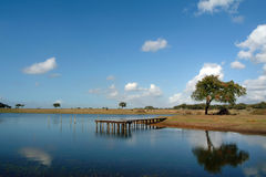 Pilastro in lago Immagine Stock