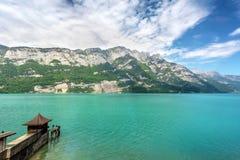 Pilastro su un lago della montagna nelle alpi, Svizzera Fotografia Stock Libera da Diritti
