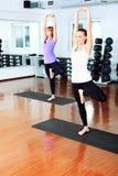 Pilates Royalty Free Stock Image