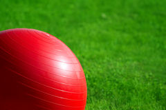 Pilates Ball on Grass Stock Images