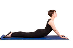 Pilates - Swan Royalty Free Stock Images