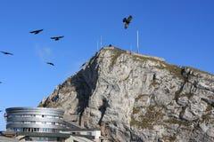 Pilatus Berg, Grenzstein in der Schweiz Lizenzfreie Stockfotos