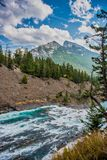 Pilbågeflod Banff, kanadensiska steniga berg Royaltyfri Foto