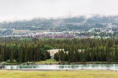 Pilbågefloden i Canmore Arkivbilder