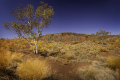Pilbara Stock Photos