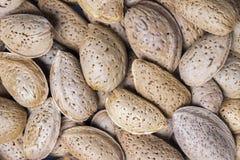 Pile of almonds close-up . Royalty Free Stock Photos