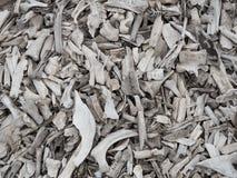 Pile of animal bones Stock Photography