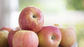 Pile of apples. Fresh apples in a pile stock images
