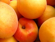 Pile of apricots Royalty Free Stock Images