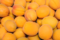 Pile of apricots Royalty Free Stock Photos