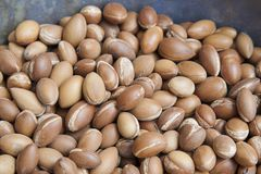 Pile of argan seeds at a Moroccan farmer`s market, in Marrakesh stock image