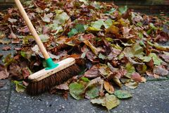 Pile of autumn leaves on backyard patio with broom Stock Photos