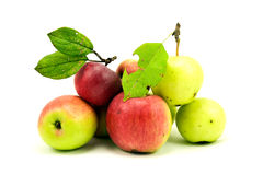 Pile of autumnal apples Royalty Free Stock Images