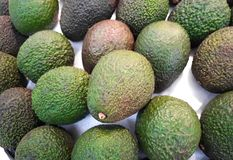 A pile of avocado fruit. On the tray in supermarket Royalty Free Stock Image