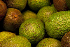 Pile of Avocados. In Market Royalty Free Stock Photo