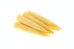 Pile of baby corn isolated. On white background Stock Photography