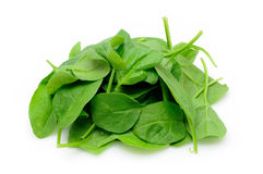 Pile of baby spinach Royalty Free Stock Photo