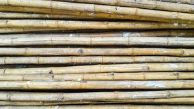 Pile of Bamboo for backgrond. And texture Royalty Free Stock Image