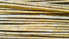 Pile of Bamboo. For background Royalty Free Stock Image