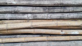 Pile of Bamboo. For background Stock Photo