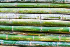Pile of bamboo closeup Royalty Free Stock Images