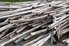 A pile of bamboo log Stock Images