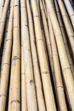 Pile of bamboo wood Stock Photos