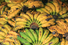 Pile of banana Stock Images