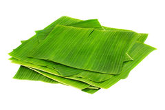 Pile of banana leaves Stock Images