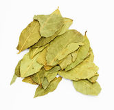 Pile of bay leaves Stock Photo