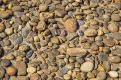 Pile of Beach Stones Stock Image
