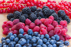Pile of berry mix Stock Images