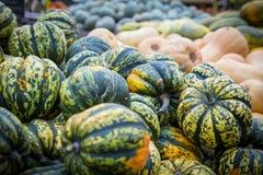 Pile of big green pumpkins, natural background Stock Photo