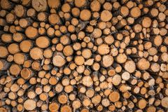 A pile of biomass energy. Getting energy by burning wood has been classed as a renewable energy source stock images