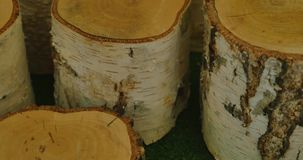 Pile of a birch firewood. stock video footage