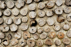 Pile of a birch firewood Stock Images