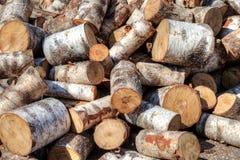 Pile of birch firewood Royalty Free Stock Photos