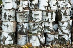 Pile of birch logs Stock Photos