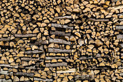 Pile of birch wood Royalty Free Stock Photo