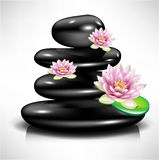 Pile of black massage stones and lotus flowers Royalty Free Stock Image