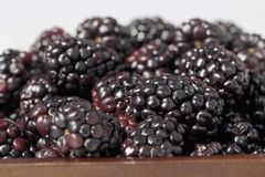 Pile of blackberries on the bowl Royalty Free Stock Images