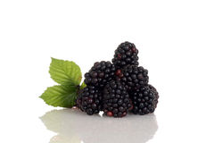 Pile of blackberries with leaves Royalty Free Stock Images