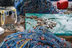 Nets and caught fish on a boat deck. Pile of blue nets and freshly caught small fish on a boat deck in Zante Island, Greece royalty free stock photography