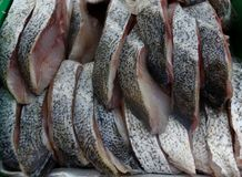 Blue snapper steak on ice at fish market royalty free stock photo